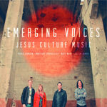 Emerging_voices